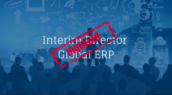 Interim Director Global ERP (1)