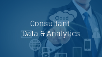 Consultant Data & Analytics (1)