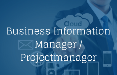Business Information Manager (3)