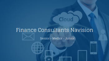 Finance Consultants Navision