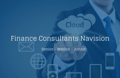 Finance Consultants Navision