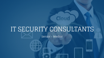 IT Security Consultants