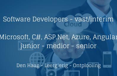 Software Developers Microsoft