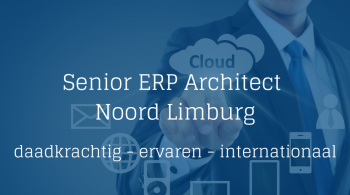 ERP Architect